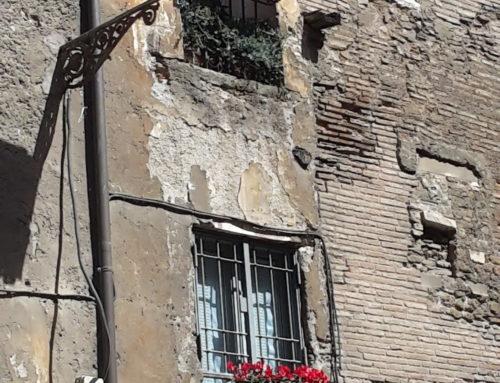 La Nostra Foto…del Portico di Ottavia…fra le 20 vincitrici